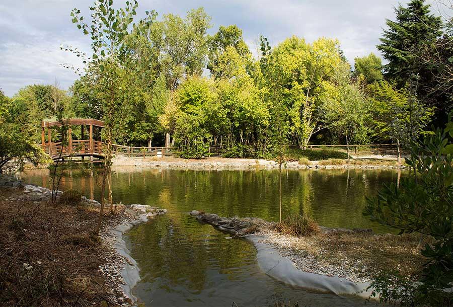 Interventi ai laghetti del Parco della Resistenza