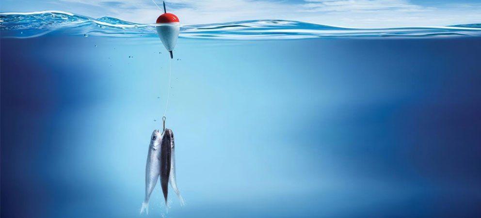 pescare a Rimini
