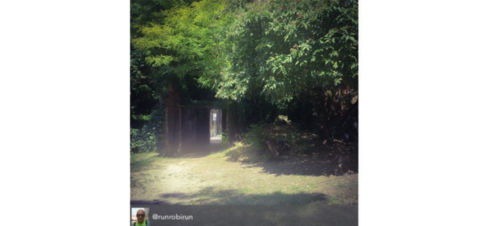 Giardino degli aromi di palazzo lettimi a rimini for Giardino rimini