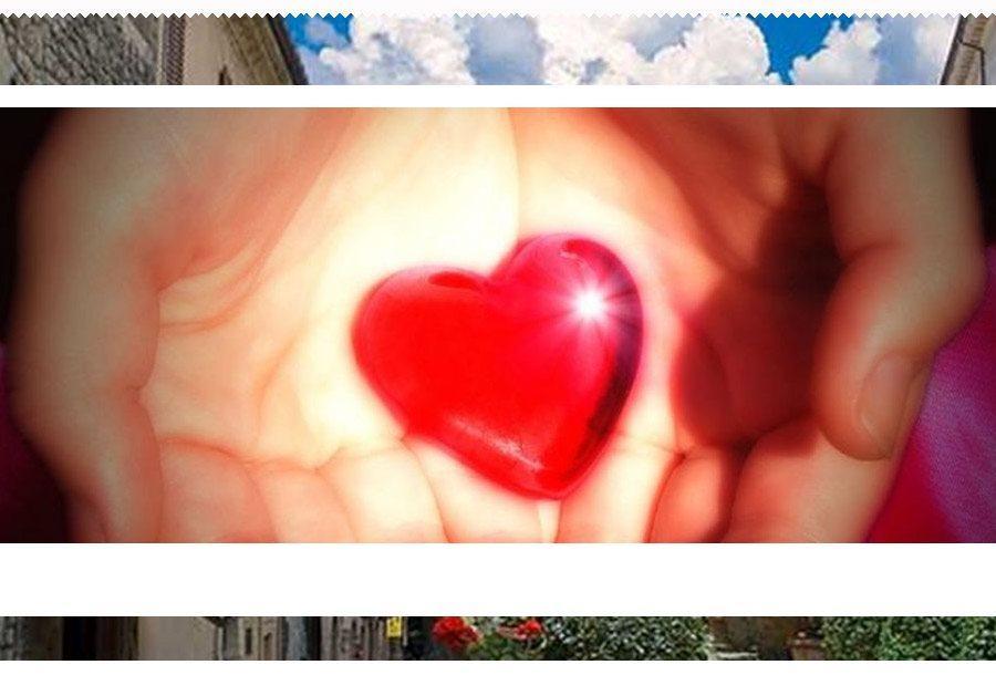 Associazione volontari sammarinesi del sangue e degli organi