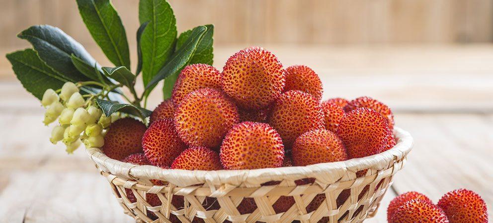 I Frutti Dimenticati della Romagna