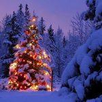 Natale nel borgo di Mondolfo
