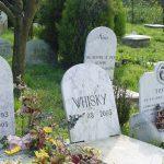 Cimitero per cani e gatti a Bellaria