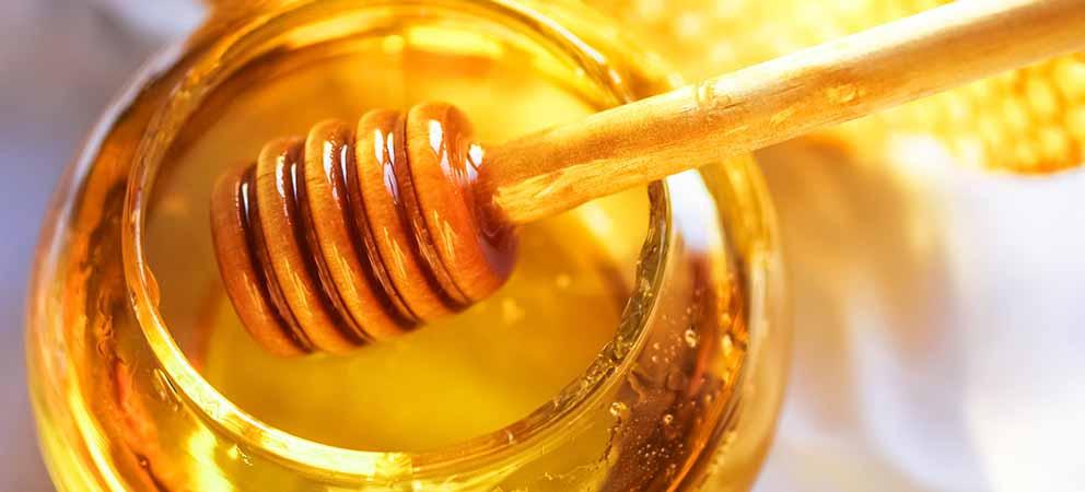 Dove comprare miele a Rimini