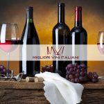 Migliori Vini Italiani: il futuro del vino in un unico portale