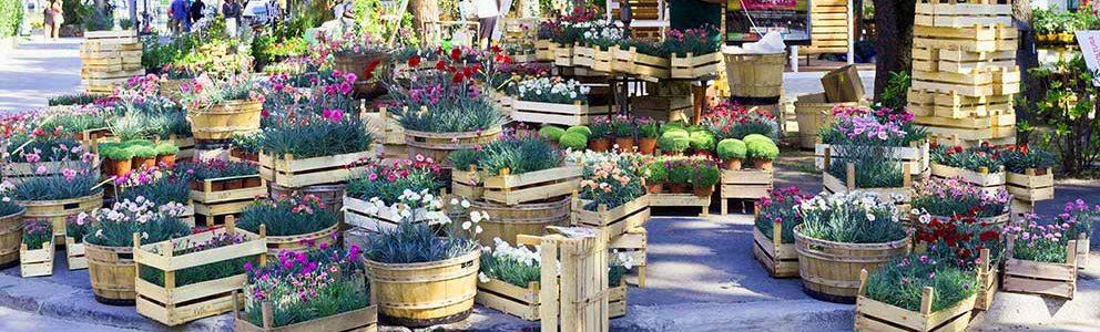 rimini-giardini-dautore-piazzale-fellini